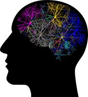 Manifestation Hack - Mind