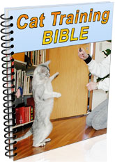 Cat Spraying No More - Cat Training Bible