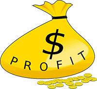 Click Wealth System - Profit