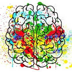 Revision - Brain